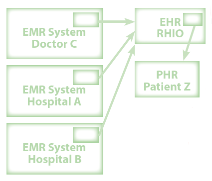 Essay on electronic health records